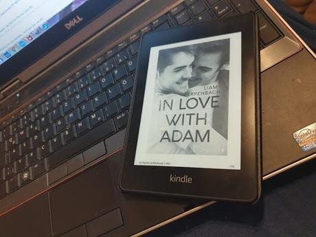 [REVIEW] Liam Erpenbach: In Love with Adam