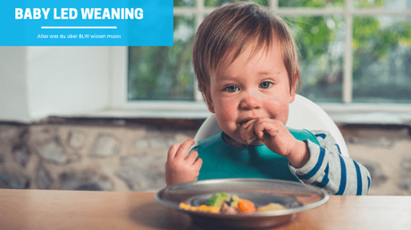 Baby Led Weaning – Alles Wichtige zu BLW!