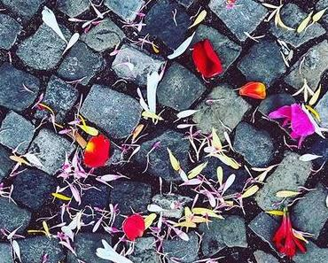 Happy Valentine's Day..🥀| #berlin #berlinspiriert #blog #blogger #love #lifestyle #berlinlove #berlinlife #igers #igersberlin #igers_berlin #ig_berlin #ig_berlincity #berlin365 #valentine #valentinesday2019 #flowers #for #everyone #flowerstagram
