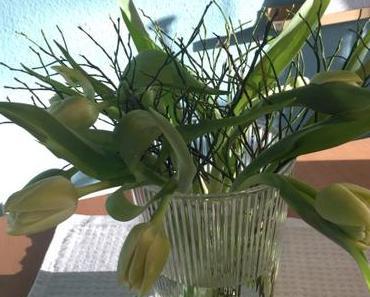 Friday-Flowerday – oder – Die ersten Tulpen