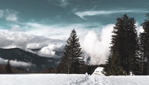 [TRVL] Schwarzwaldliebe Brend