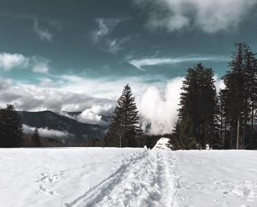 [TRVL] Schwarzwaldliebe – Brend