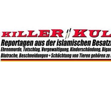 Asylbetrug und Erschleichung von Sozialleistungen ist für Zuwanderer in Deutschland straffrei!