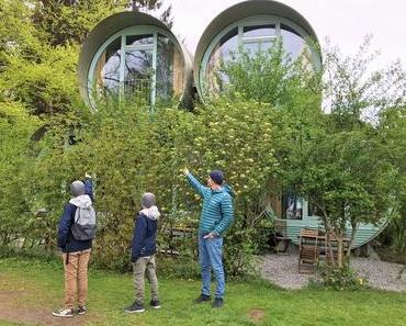 Swiss Tubes: Glamping direkt am Thunersee, Teil 1
