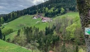 Schwarzwälder Wandersinfonie, Wiesensteig