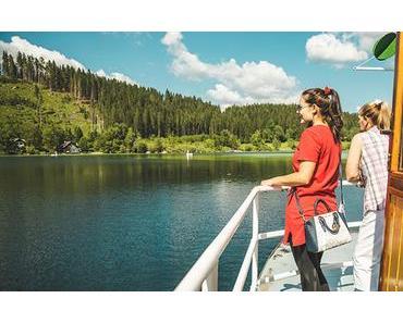 Mitarbeitertag – Museumstramway, Ausflugsschiff & Bootsverleih Erlaufsee