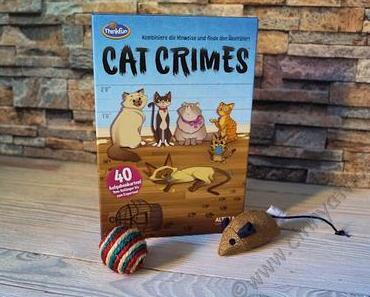 Warum ich Angst habe, dass sich meine Katzen Ideen für Unsinn geholt haben und was unsere Nichte damit zu tun hat #CatCrimes #Thinkfun #Spiele