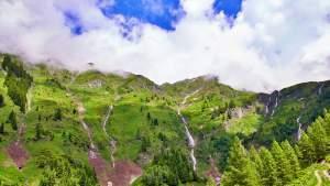 Wanderung Kreealm-Wasserfall - Kreealm-Bichlhuette