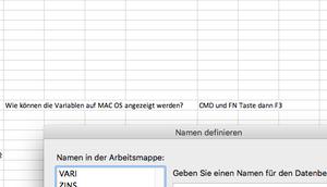 können Variablen (Namen) Excel Version angezeigt werden?