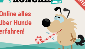 Alles über Hunde Online-Kongress