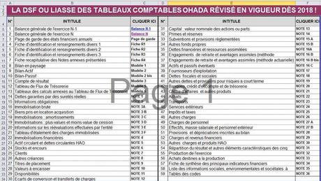 LE COMPTABLE TÉLÉCHARGER PDF PLAN SYSCOA