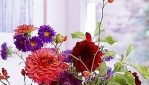 Friday-Flowerday 38/19