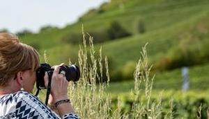 Rheinhessen genießen Genießer-Trip regionalen Erzeugern, köstlichem Essen wunderbaren Weinen