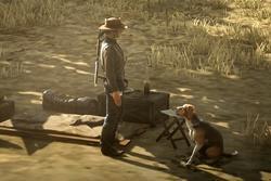Dead Redemption Pferd Hund