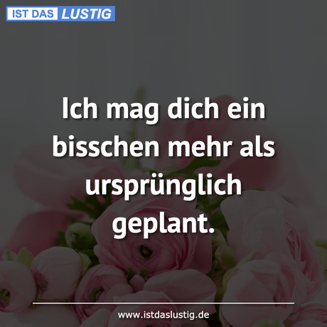 Log-Dich-Ein