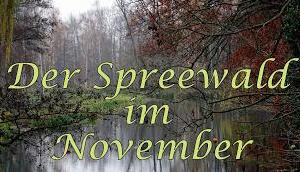 Spreewald November