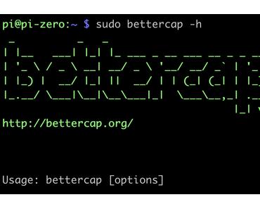 Wie kann das funktionsreiche Analysetool bettercap auf einem Raspberry Pi installiert werden? Oder sehen was zu Weihnachten im Netz los ist.