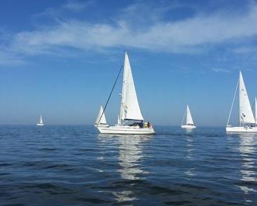 Foto: Segelboote auf dem Ijsselmeer