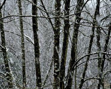 Schnee letztendlich - unser Kakao Rezept