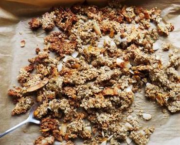 Zuckerfreies Mango-Kokos-Granola – jetzt wird´s knusprig