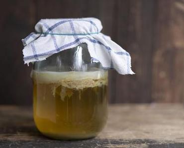 Kombucha selbermachen: Die ersten Schritte mit dem Teepilz