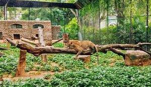 Sind Zoos sinnvoll zeitgemäß? Contra