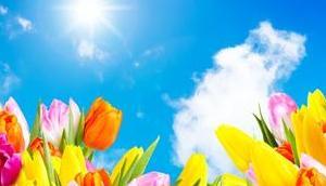Lebhafte Frühlingsdüfte verbinden mediterranen Charme Blütenzauber