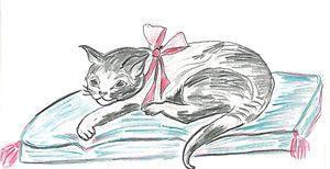 Unsere Einnahmen aus der Bannerwerbung gehen diesmal an Angeles Katzenhilfe e.V.