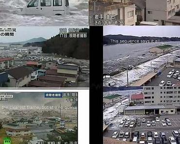 Der Fukushima- Fake
