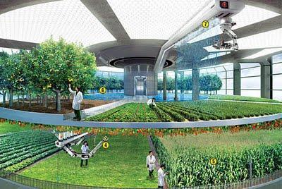Vertical Farming - Nahrung für die Zukunft der Menschheit?