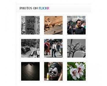 Flickr vs. Google+