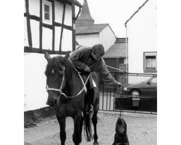 Hundeleinen für Reiter