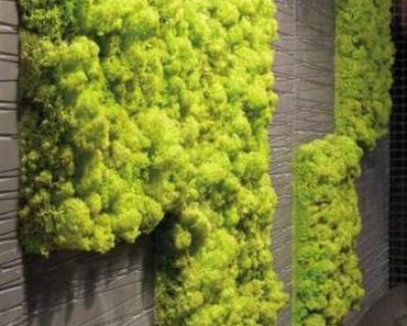 Vertikaler Garten für Büro und Wohnung