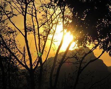 Vollgesogen mit goldener Oktobersonne: Eine Wanderung von Rieden am Forgensee über den Faulensee und die Fachklinik Enzensberg zur Burgruine Hopfen am See