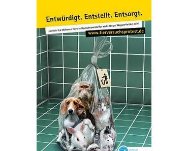 Deutscher Rekord bei Tierversuchen