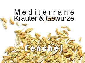 Fenchel (Foeniculum vulgare Mill.)
