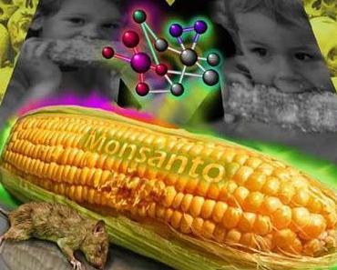 Frankreich bezieht Stellung gegen die Monsantos GMOs, trotz Aufhebung des Verbots