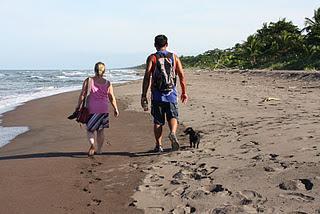 Hunde in Costa Rica