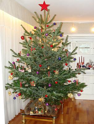 kann ein weihnachtsbaum eigentlich noch sch ner sein. Black Bedroom Furniture Sets. Home Design Ideas