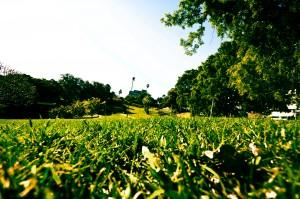 Romapark