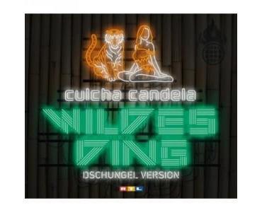 Culcha Candela liefern Dschungelsong für RTL Dschungelcamp 2012