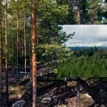 Treehotel-photo-Peter-Lundstrom-22