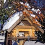 Futterhaus Voegel Winter, Bildrechte Harald Lange - Fotolia.com