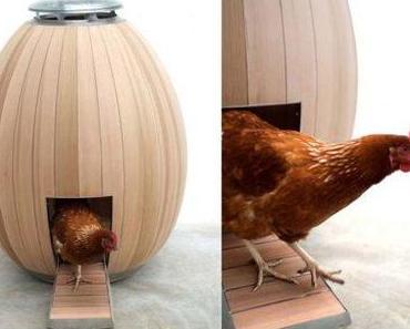 Ich wünscht` ich wär ein Huhn…
