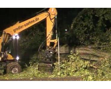 Stuttgart 21: Die ersten Bäume sind gefällt