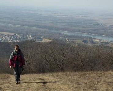 Erster Ausflug nach langer Pause – Hundsheimer Berg, 10.03.2012