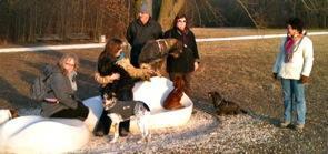 Reminder: Sonntagsspaziergänge mit der Hundephilosophin im März: Abenteuerspaziergang, Social Walk, Hunderunde