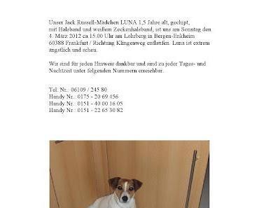 JRT in Frankfurt gesucht