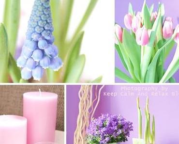 Spring Time & Kauftipp
