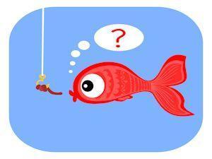 Stinkt der Fisch? oder wie kommt Molli an die Angel?